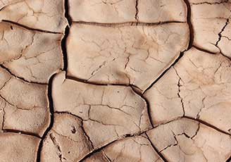 However, drought also causes the clay soil to shrink